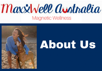 MaxxWell Blog About US