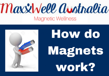 MaxxWell Blog Magnets