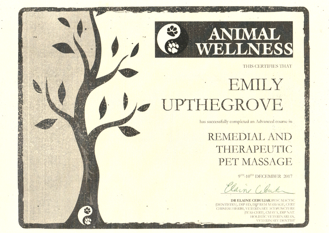 AnimalWellnessCertificate2017